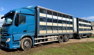скотовоз MERCEDES-BENZ Actros 2548 for pigs transport + прицеп скотовоз